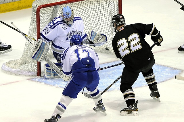 ledni hokej.jpg